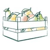 Apfel- und Birnenkiste
