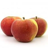 Karmijn de Sonnaville Apfel